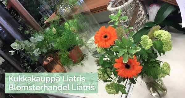 Kukkakauppa Liatris Parainen