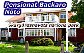 Pensionat-Backaro