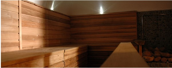 Spa hot sauna